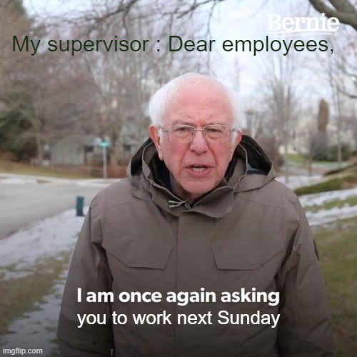 I need some sleep |  My supervisor : Dear employees, you to work next Sunday | image tagged in bernie i am once again asking for your support,work,overtime,sleep,money,tired | made w/ Imgflip meme maker