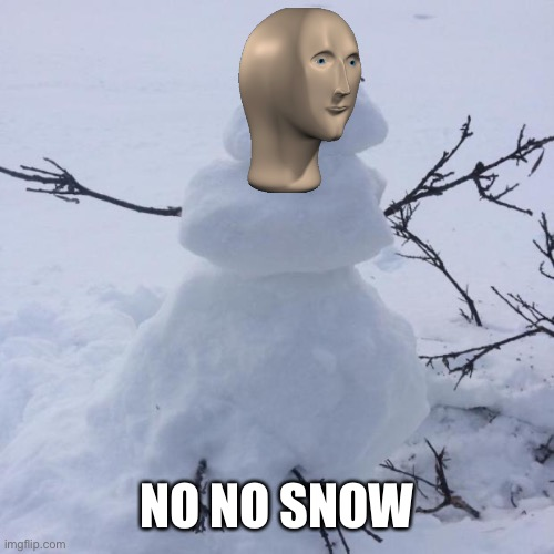 Snowman | NO NO SNOW | image tagged in snowman | made w/ Imgflip meme maker