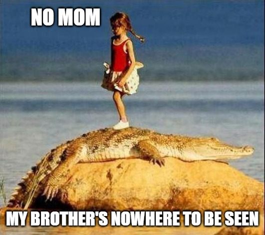 No Mom |  NO MOM; MY BROTHER'S NOWHERE TO BE SEEN | image tagged in gator,funny,memes,brother,sister,lunch | made w/ Imgflip meme maker