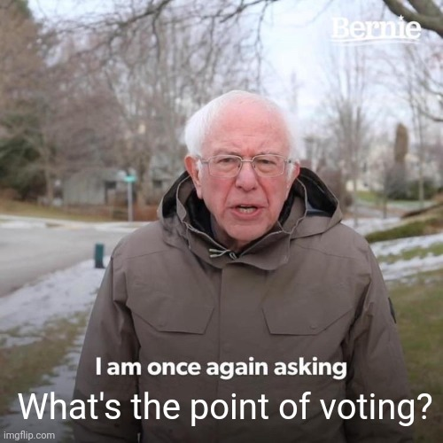 Bernie I Am Once Again Asking For Your Support |  What's the point of voting? | image tagged in memes,bernie i am once again asking for your support | made w/ Imgflip meme maker