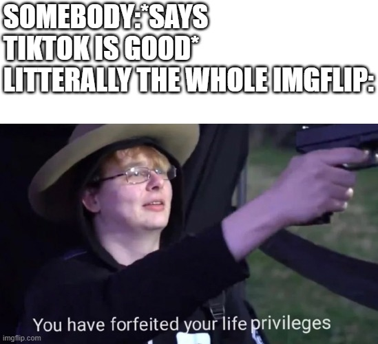 you have forfeited life privileges |  SOMEBODY:*SAYS TIKTOK IS GOOD* LITTERALLY THE WHOLE IMGFLIP: | image tagged in you have forfeited life privileges | made w/ Imgflip meme maker