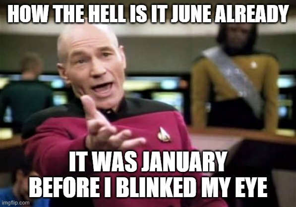 Time Goes Fast as Heck |  HOW THE HELL IS IT JUNE ALREADY; IT WAS JANUARY BEFORE I BLINKED MY EYE | image tagged in memes,picard wtf | made w/ Imgflip meme maker