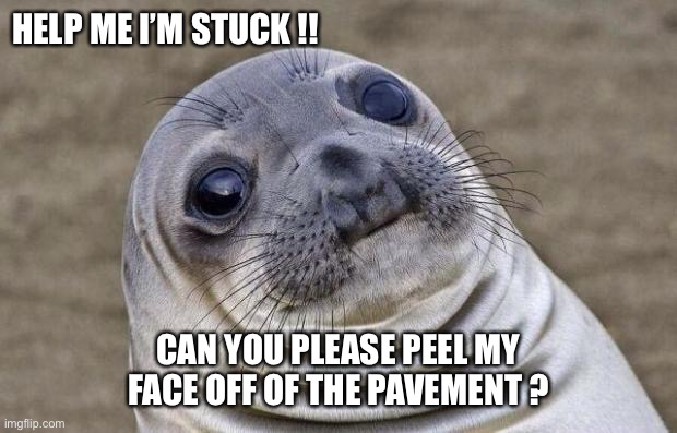 Flat Faced Selfie Failure |  HELP ME I'M STUCK !! CAN YOU PLEASE PEEL MY FACE OFF OF THE PAVEMENT ? | image tagged in memes,awkward moment sealion | made w/ Imgflip meme maker
