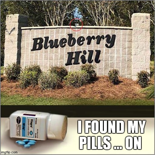 Feelin' Lucky ! |  I FOUND MY PILLS ... ON | image tagged in fun,crazy pills,blueberry,song lyrics | made w/ Imgflip meme maker
