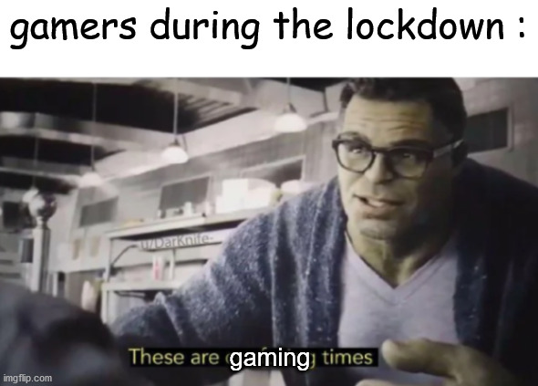 These are confusing times |  gamers during the lockdown :; gaming | image tagged in these are confusing times | made w/ Imgflip meme maker