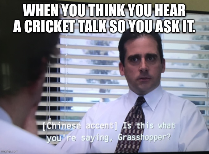 Making a meme out of every line of the office day 3 1/2 |  WHEN YOU THINK YOU HEAR A CRICKET TALK SO YOU ASK IT. | image tagged in the office | made w/ Imgflip meme maker