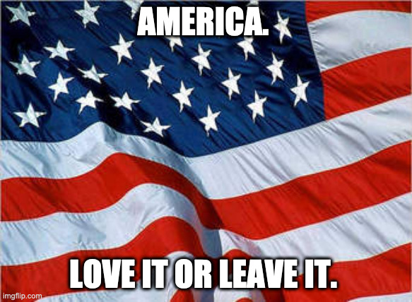 America. Love it or leave it. |  AMERICA. LOVE IT OR LEAVE IT. | image tagged in usa flag | made w/ Imgflip meme maker