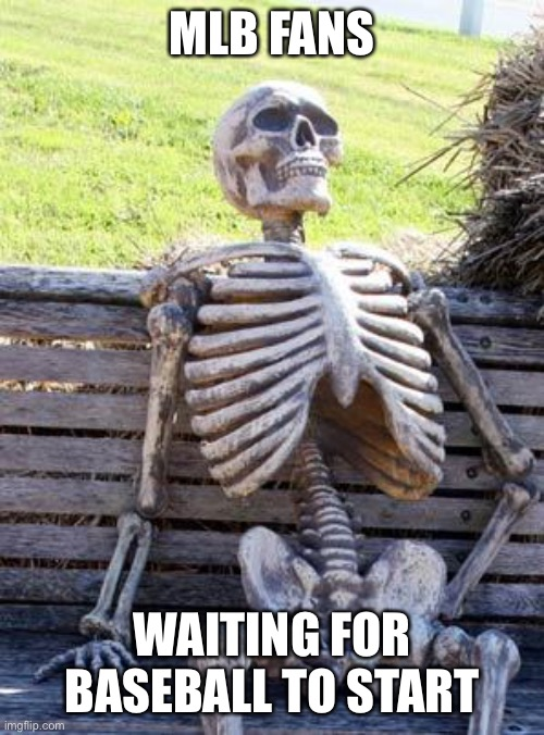 Waiting Skeleton Meme |  MLB FANS; WAITING FOR BASEBALL TO START | image tagged in memes,waiting skeleton | made w/ Imgflip meme maker