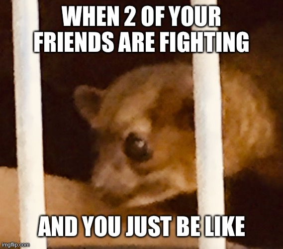 '-' |  WHEN 2 OF YOUR FRIENDS ARE FIGHTING; AND YOU JUST BE LIKE | image tagged in funny | made w/ Imgflip meme maker