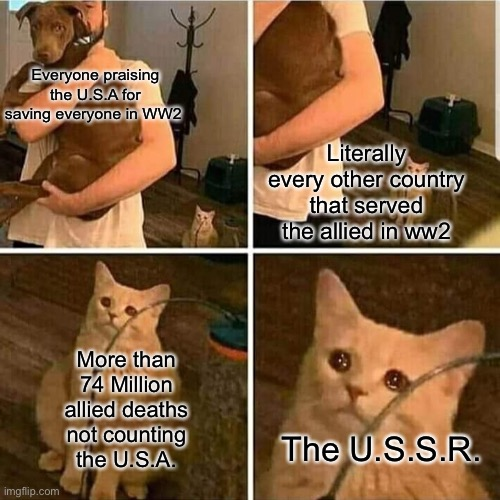 Why only the U.S. Military |  Everyone praising the U.S.A for saving everyone in WW2; Literally every other country that served the allied in ww2; More than 74 Million allied deaths not counting the U.S.A. The U.S.S.R. | image tagged in sad cat holding dog | made w/ Imgflip meme maker