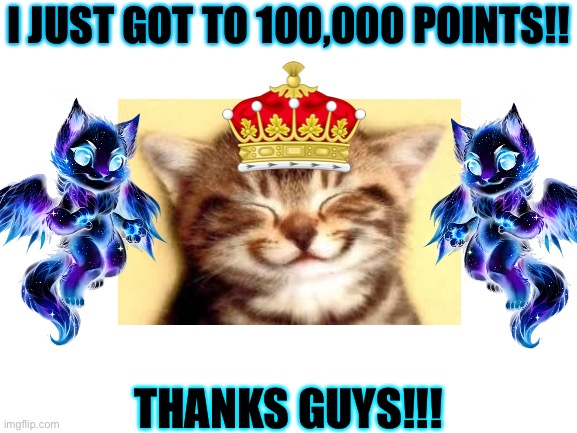 I JUST GOT TO 100,000 POINTS!! THANKS GUYS!!! | image tagged in cats,celebration,imgflip points,breaking news | made w/ Imgflip meme maker