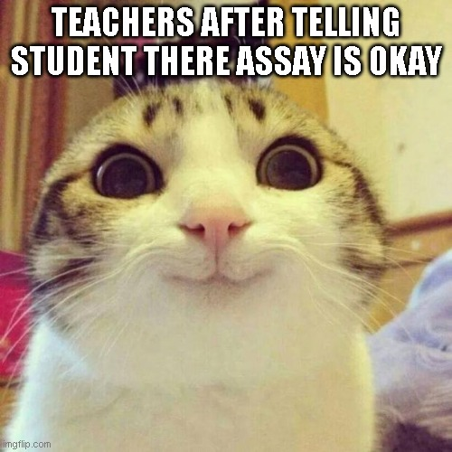 Smiling Cat Meme |  TEACHERS AFTER TELLING STUDENT THERE ASSAY IS OKAY | image tagged in memes,smiling cat | made w/ Imgflip meme maker