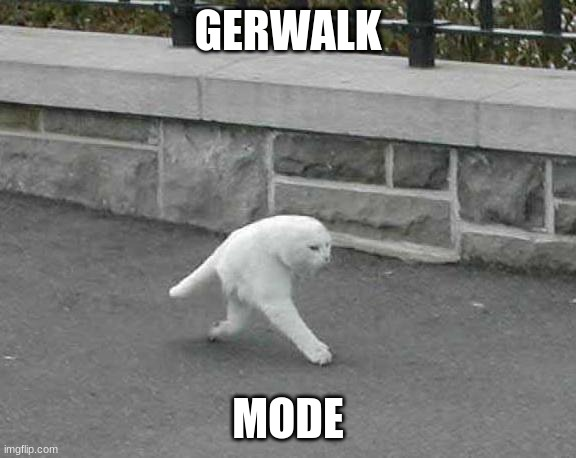 Half cat |  GERWALK; MODE | image tagged in half cat | made w/ Imgflip meme maker
