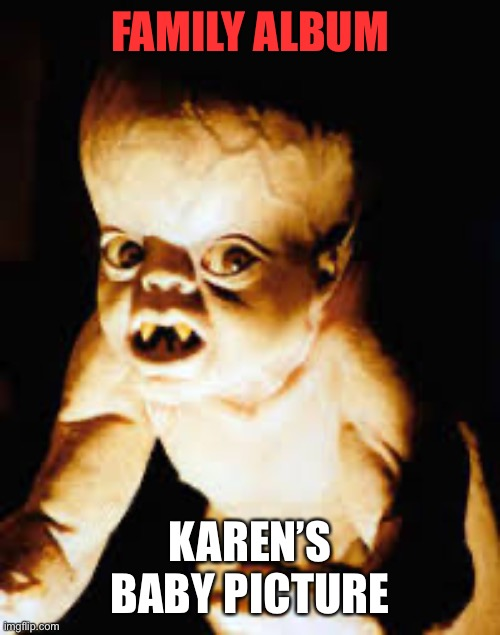 'KAREN'S ' Family album |  FAMILY ALBUM; KAREN'S BABY PICTURE | image tagged in family,omg karen,karen,funny memes,they're the same picture | made w/ Imgflip meme maker