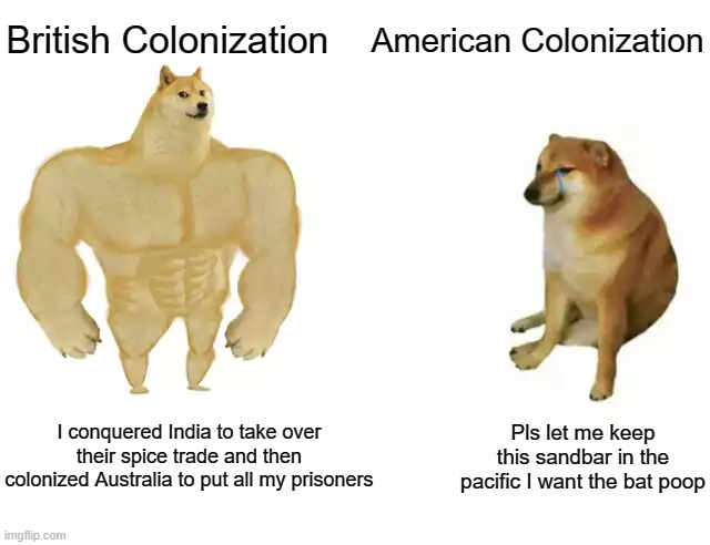 Buff doge vs cheems |  American Colonization; British Colonization; Pls let me keep this sandbar in the pacific I want the bat poop; I conquered India to take over their spice trade and then colonized Australia to put all my prisoners | image tagged in buff doge vs cheems,memes,doge,colonialism,british,history | made w/ Imgflip meme maker