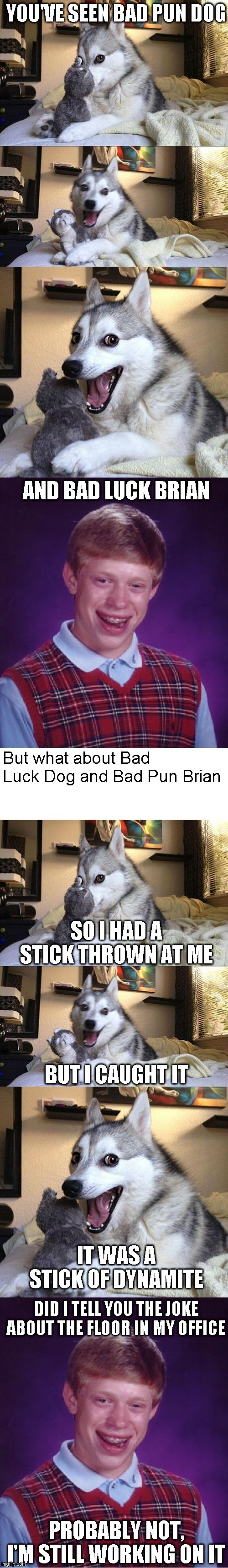 Bad Pun Brain and Bad Luck Dog | image tagged in memes,bad luck brian,bad pun dog | made w/ Imgflip meme maker