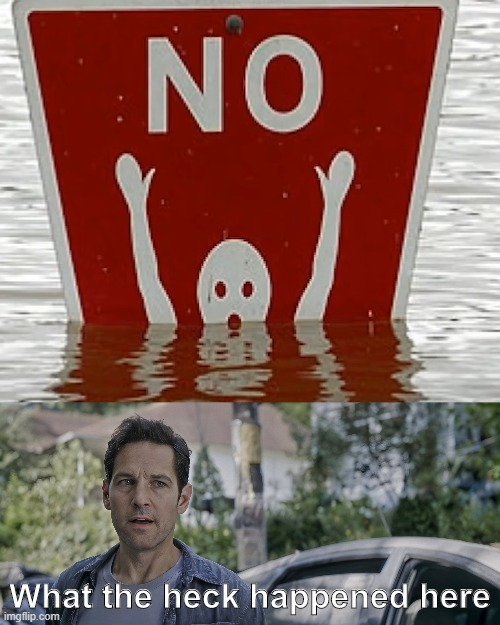 What in the world happened here? |  What the heck happened here | image tagged in antman what the heck happened here,stupid signs,memes,funny,swimming pool | made w/ Imgflip meme maker