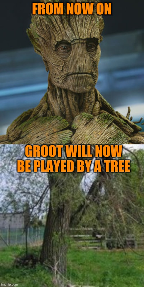 tree |  FROM NOW ON; GROOT WILL NOW BE PLAYED BY A TREE | image tagged in memes,secure parking,i am groot | made w/ Imgflip meme maker