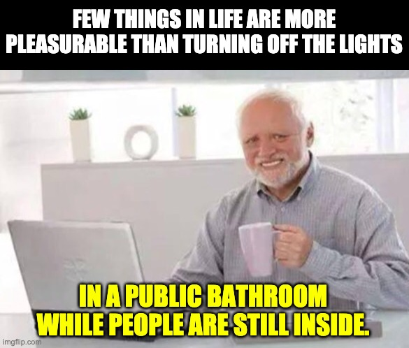 Harold |  FEW THINGS IN LIFE ARE MORE PLEASURABLE THAN TURNING OFF THE LIGHTS; IN A PUBLIC BATHROOM WHILE PEOPLE ARE STILL INSIDE. | image tagged in harold | made w/ Imgflip meme maker