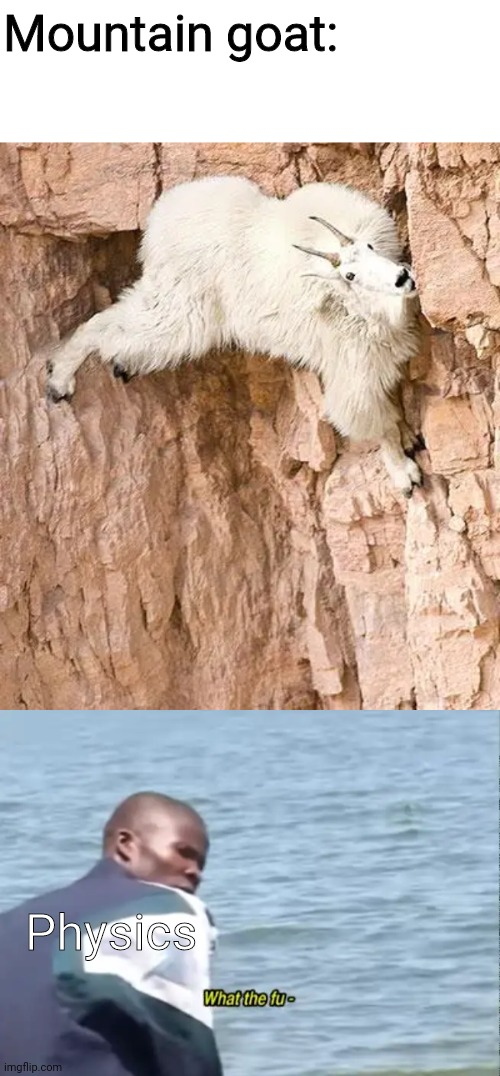 Mountain goat:; Physics | image tagged in mountain goat,what the fu-,physics,memes | made w/ Imgflip meme maker
