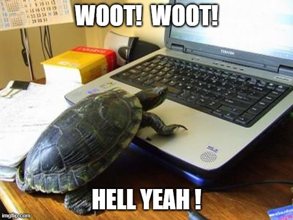 Turtle Computer | WOOT!  WOOT! HELL YEAH ! | image tagged in turtle computer | made w/ Imgflip meme maker