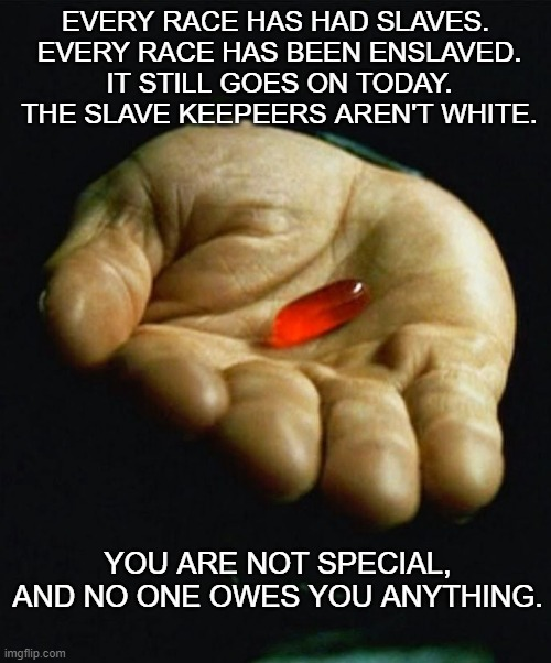 You are not special. |  EVERY RACE HAS HAD SLAVES.  EVERY RACE HAS BEEN ENSLAVED.  IT STILL GOES ON TODAY.  THE SLAVE KEEPEERS AREN'T WHITE. YOU ARE NOT SPECIAL, AND NO ONE OWES YOU ANYTHING. | image tagged in red pill | made w/ Imgflip meme maker