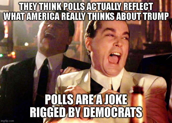 Good Fellas Hilarious Meme | THEY THINK POLLS ACTUALLY REFLECT WHAT AMERICA REALLY THINKS ABOUT TRUMP POLLS ARE A JOKE RIGGED BY DEMOCRATS | image tagged in memes,good fellas hilarious | made w/ Imgflip meme maker