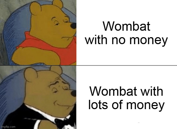Tuxedo Winnie The Pooh Meme |  Wombat with no money; Wombat with lots of money | image tagged in memes,tuxedo winnie the pooh | made w/ Imgflip meme maker