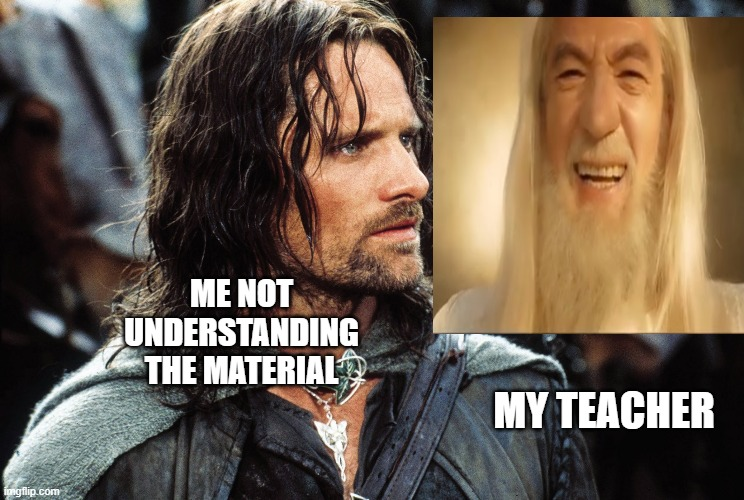 confused aragorn meme |  ME NOT UNDERSTANDING THE MATERIAL; MY TEACHER | image tagged in aragorn | made w/ Imgflip meme maker