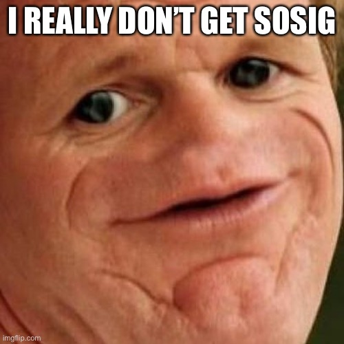 SOSIG |  I REALLY DON'T GET SOSIG | image tagged in sosig | made w/ Imgflip meme maker