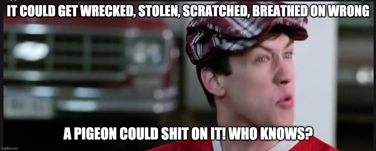 A pigeon could shit on it |  IT COULD GET WRECKED, STOLEN, SCRATCHED, BREATHED ON WRONG; A PIGEON COULD SHIT ON IT! WHO KNOWS? | image tagged in ferris bueller,cameron,pigeon | made w/ Imgflip meme maker