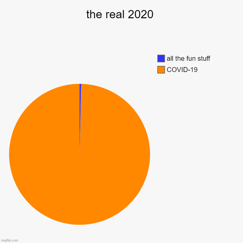 the real 2020 | COVID-19, all the fun stuff | image tagged in charts,pie charts | made w/ Imgflip chart maker