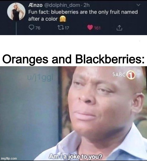 am I a joke to you |  Oranges and Blackberries: | image tagged in am i a joke to you,funny memes,dank memes,memes | made w/ Imgflip meme maker