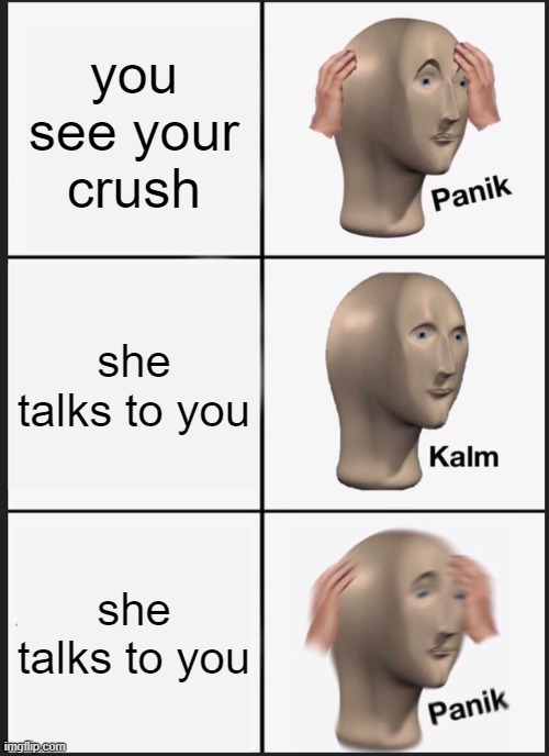 Panik Kalm Panik Meme |  you see your crush; she talks to you; she talks to you | image tagged in memes,panik kalm panik | made w/ Imgflip meme maker