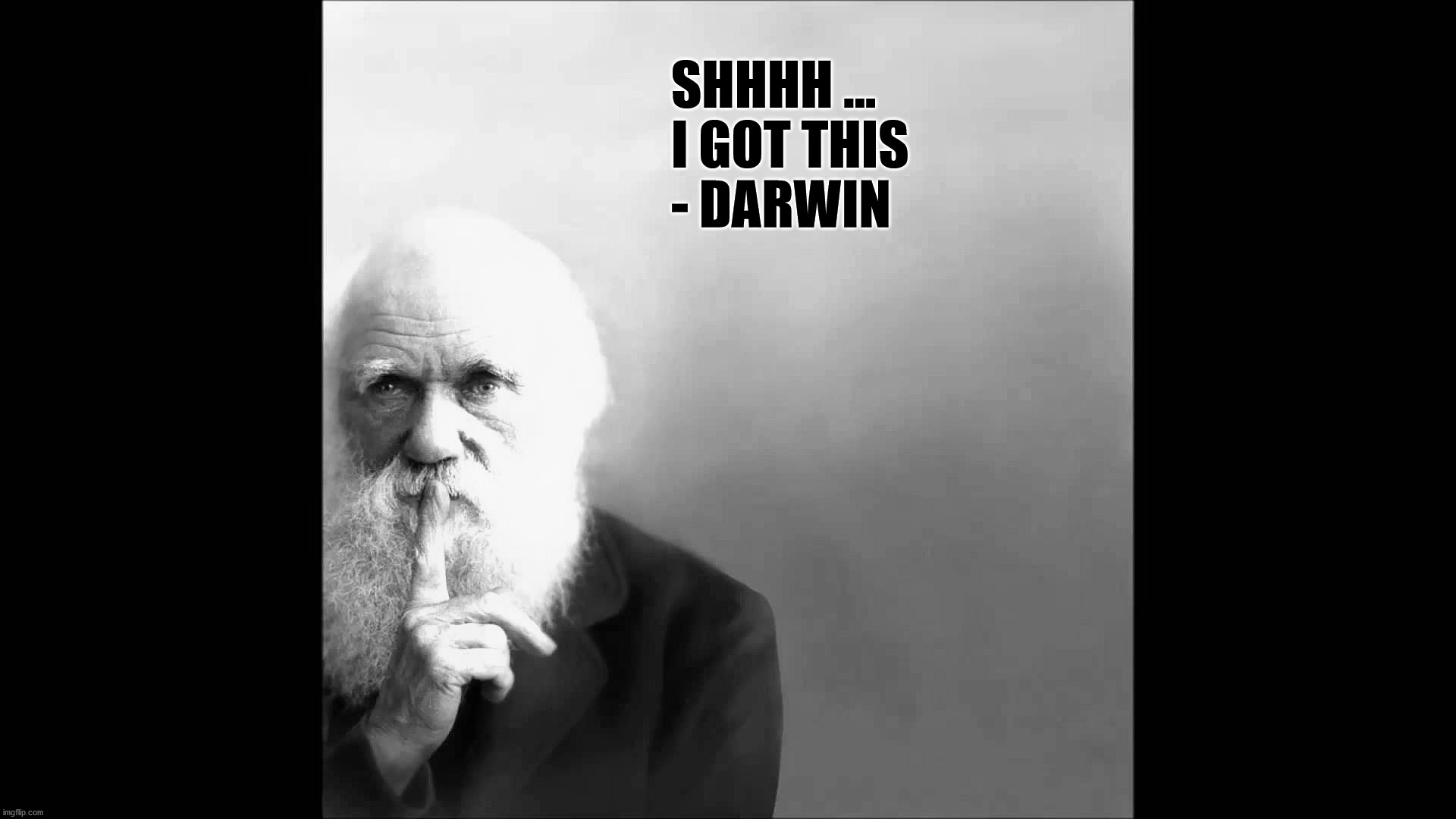 I GOT THIS |  SHHHH ...  I GOT THIS - DARWIN | image tagged in darwin,i got this | made w/ Imgflip meme maker