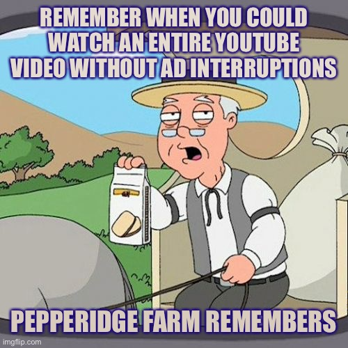 Pepperidge Farm Remembers Meme |  REMEMBER WHEN YOU COULD WATCH AN ENTIRE YOUTUBE VIDEO WITHOUT AD INTERRUPTIONS; PEPPERIDGE FARM REMEMBERS | image tagged in memes,pepperidge farm remembers | made w/ Imgflip meme maker