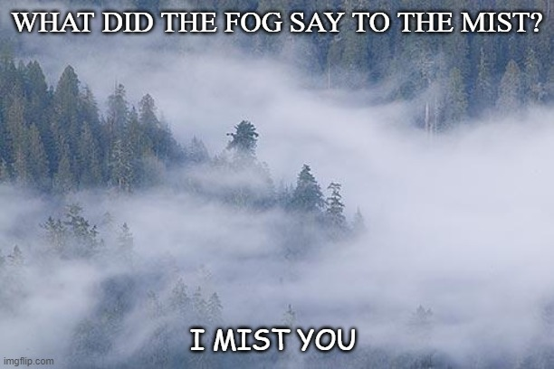 Daily Bad Dad Joke June 30 2020 |  WHAT DID THE FOG SAY TO THE MIST? I MIST YOU | image tagged in foggy | made w/ Imgflip meme maker