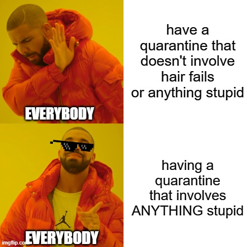 anybody?!?! |  have a quarantine that doesn't involve hair fails or anything stupid; EVERYBODY; having a quarantine that involves ANYTHING stupid; EVERYBODY | image tagged in memes,drake hotline bling,quarantine,covid-19,stupid,oh no | made w/ Imgflip meme maker