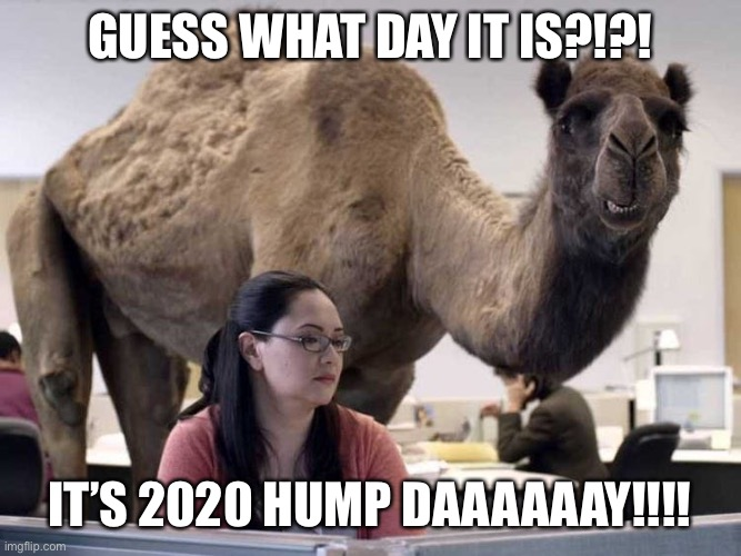 2020 Hump Day |  GUESS WHAT DAY IT IS?!?! IT'S 2020 HUMP DAAAAAAY!!!! | image tagged in covid-19,2020,hump day | made w/ Imgflip meme maker