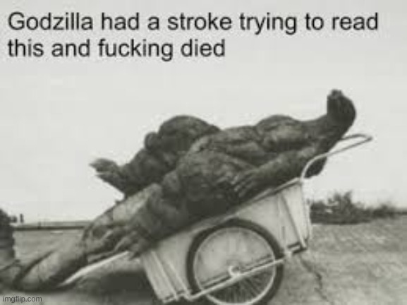 godzilla had a stroke trying to read this and he fucking died | image tagged in godzilla had a stroke trying to read this and he fucking died | made w/ Imgflip meme maker