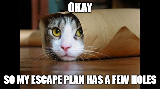 Escape Plan |  OKAY; SO MY ESCAPE PLAN HAS A FEW HOLES | image tagged in escape,cats,dogs,funny,memes,sawhorse | made w/ Imgflip meme maker