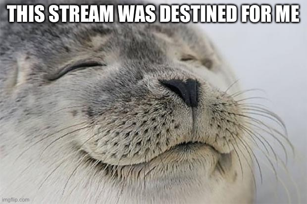 My username: Baconandtacos25 |  THIS STREAM WAS DESTINED FOR ME | image tagged in memes,satisfied seal | made w/ Imgflip meme maker
