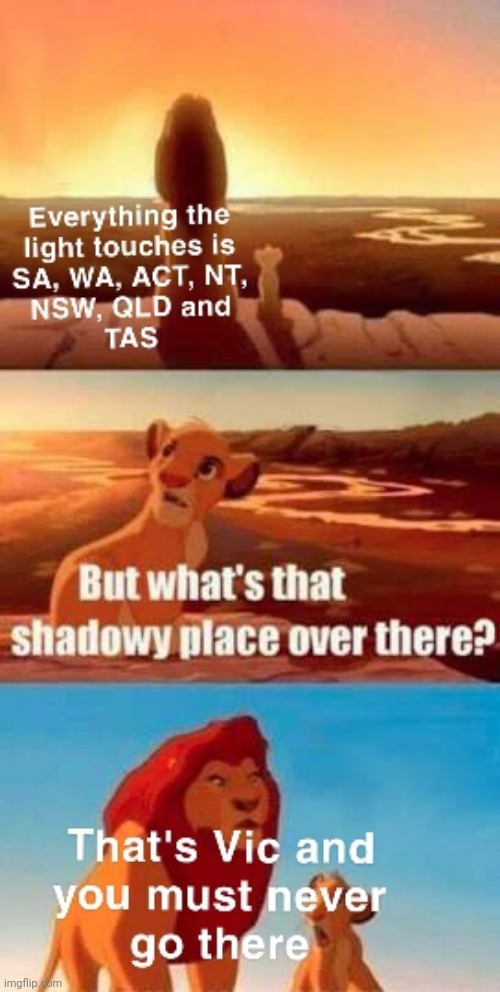 How all of Australia us looking at Vic right now | image tagged in meanwhile in australia,covid19,lion king,disney,australians | made w/ Imgflip meme maker