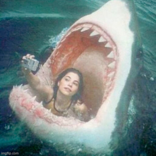 good idea | image tagged in shark_head_out_of_water,girl,selfie,good times | made w/ Imgflip meme maker