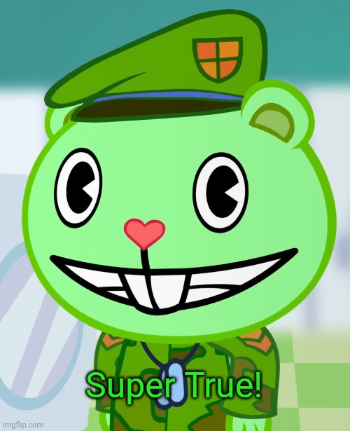 Flippy Smiles (HTF) | Super True! | image tagged in flippy smiles htf | made w/ Imgflip meme maker