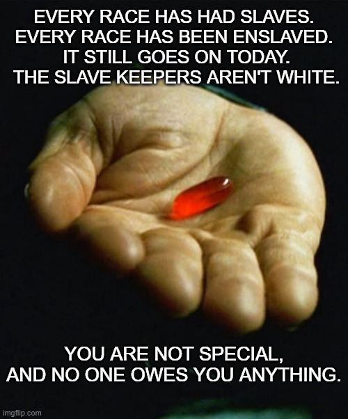 You're not special. |  EVERY RACE HAS HAD SLAVES. EVERY RACE HAS BEEN ENSLAVED.  IT STILL GOES ON TODAY.  THE SLAVE KEEPERS AREN'T WHITE. YOU ARE NOT SPECIAL, AND NO ONE OWES YOU ANYTHING. | image tagged in red pill | made w/ Imgflip meme maker
