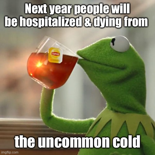 But That's None Of My Business Meme | Next year people will be hospitalized & dying from the uncommon cold | image tagged in memes,but that's none of my business,kermit the frog | made w/ Imgflip meme maker