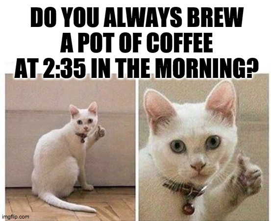 Furrresh Coffee |  DO YOU ALWAYS BREW A POT OF COFFEE AT 2:35 IN THE MORNING? | image tagged in coffee,coffee addict,funny cat memes,thumbs up,cat memes,late night | made w/ Imgflip meme maker