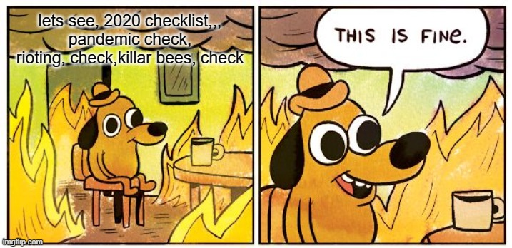 This Is Fine |  lets see, 2020 checklist,,, pandemic check, rioting, check,killar bees, check | image tagged in memes,this is fine | made w/ Imgflip meme maker