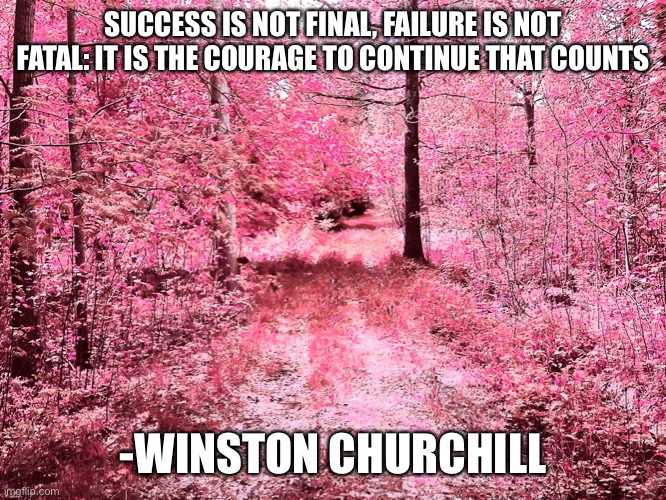 SUCCESS IS NOT FINAL, FAILURE IS NOT FATAL: IT IS THE COURAGE TO CONTINUE THAT COUNTS; -WINSTON CHURCHILL | image tagged in memes,motivational | made w/ Imgflip meme maker